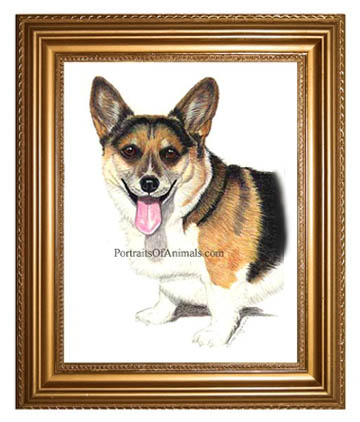 Pembroke Welsh Corgi Dog Portrait painting