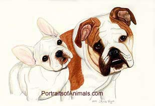 French and English Bulldogs Portrait - Pet Portraits by Cherie