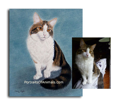 Cat Portrait Painting from photograph- Pet Portraits by Cherie