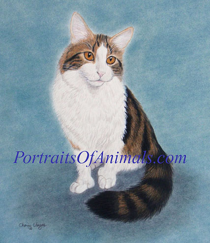 Tabby Cat Portrait Pet Portraits by Cherie Vergos