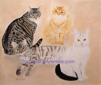 4 Cats Portrait