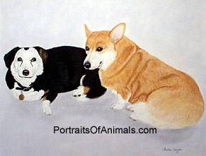 Pembroke Welsh Corgi Dog Potrait - Pet Portraits by Cherie