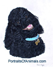 Standard Black Poodle Dog Portrait - Pet Portraits by Cherie