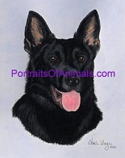 German Shepherd Portrait- Pet Portraits by Cherie Vergos