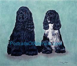 Cocker Spaniel Portrait - Pet Portraits by Cherie Vergos