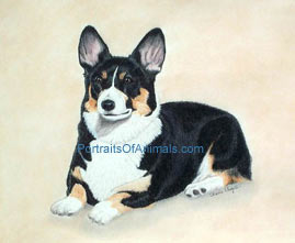 Pembroke Welsh Corgi Dog Portrait - Pet Portraits by Cherie