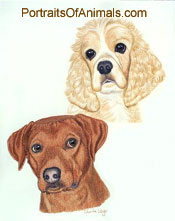 Rhodesian Ridgeback and Cocker Spaniel Dog Portrait - Pet Portraits by Cherie