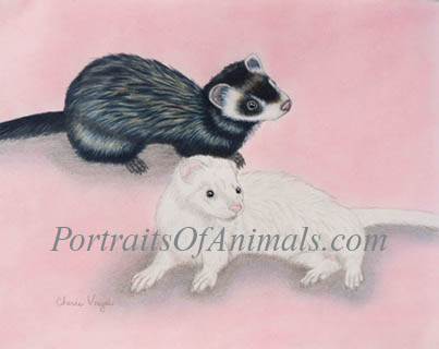 Ferret Portrait Painting