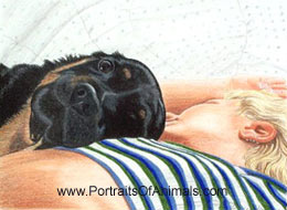 Shea & Amy Portrait  - Pet Portraits by Cherie